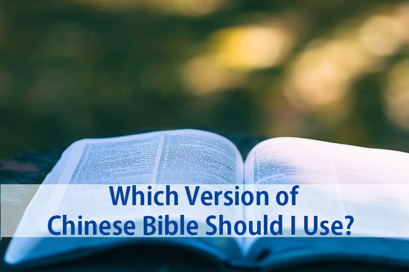 CHINESE ENGLISH BIBLES CHINESE NEW VERSION Simplified CNV /& NIV